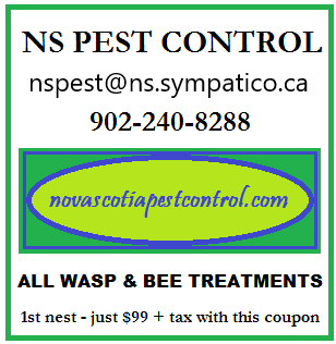 Wasp and Bee Coupon